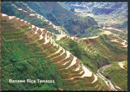 °°° 20507 - PHILIPPINES - BANAWE RICE TERRACES °°° - Filippine