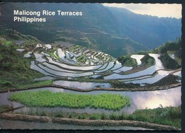 °°° 20508 - PHILIPPINES - MALICONG RICE TERRACES - 1992 With Stamps °°° - Filippine