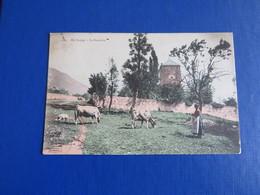 1105 - En Savoie - La Fermière - France