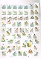 OISEAUX DE BUZIN : Ensemble De Timbres Neufs (timbres Et Bandes Rouleaux) De Belgique. - Collections, Lots & Séries