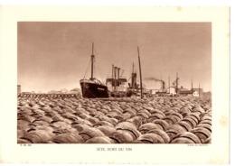 Fiche Pédagogique Année 1934 - Sète Port De Vin - Géographie