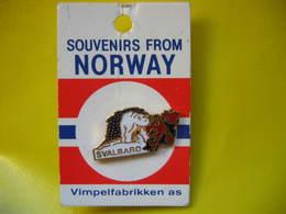 Pin's Ours Blanc, Souvenir De Norvege - Animaux