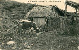 3. L'AUVERGNE PITTORESQUE - PAYSAGE DE MONTAGNE - VACHE - OIE - Elevage