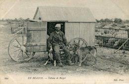 294. EN BEAUCE - CABANE DE BERGER - Elevage