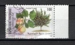 TUNISIE  N° 1391    OBLITERE COTE  0.50€     FRUIT - Tunisie (1956-...)