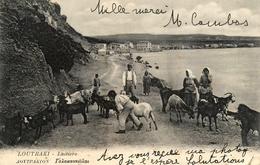 Loutraki - Loutráki - Laitiers - 1905 - Lait Milk Laitier Chevrier Chèvres - Corinthe - Greece Grèce - Grèce