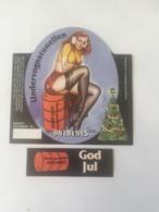 Ancienne étiquette E8 BIÈRE DANEMARK UNDERVOGNSTUNELLEN GOD JUL - Bière