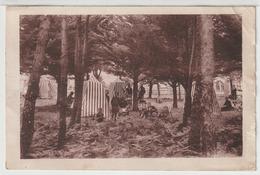 - Bourgenay : Colonie De Vacances De N.D De L'Espérance, Bourgenay Par Talmont. Le Campement Sous LesPins. - Autres Communes
