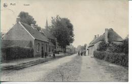 Mol Ezaert - Mol