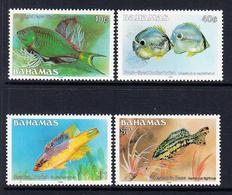 1988 Bahamas Fish Definitive REPRINTS  Complete Set Of 4 MNH  ** DIFFICULT ** - Bahamas (1973-...)