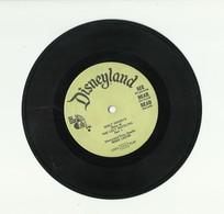 THE UGLY DUCKLING – DISNEYLAND RECORDS – VINYL – 340 – ROBIE LESTER - Kinderlieder