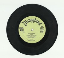 WINNIE THE POOH AND THE HONEY TREE – DISNEYLAND RECORDS – VINYL – 313 - 1966 – ROBIE LESTER - Kinderlieder