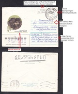 1996 .RUSSIA . Cat. Revaluation.Village Harvest Levokumsky District Stavropol Territory. - Hauskatzen