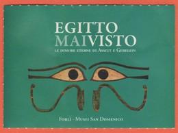 """Musei San Domenico Forlì - Mostra """"Egitto Mai Visto"""" - Biglietto D'Ingresso Ridotto - Usato - Biglietti D'ingresso"""