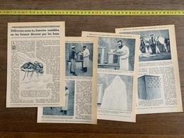 1914 JST DELIVRONS NOUS DES INSECTES NUISIBLES EN LES FAISANT DEVORER PAR LES BONS PAR CRINON - Vieux Papiers