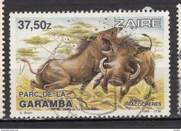 ##13, Zaire, Phacochere, Warthog, Parc De La Garamba Park, Cochon, Pig - Zaïre
