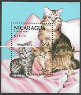 Nicaragua  1988   Sc#1710   Housecats Souv Sheet   MNH   2016 Scott Value $3.75 - Hauskatzen
