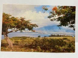 Saint Kitts Postcard, St. Kitts, Basseterre Roadsted - Saint-Christophe-et-Niévès