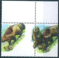 B8003 Russia Fauna Animal Mammal Wolverine WWF ERROR - Meereswelt