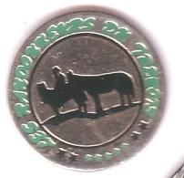 BB120 Pin's Les Randonneurs Du Frenois à FRENOIS Cote D'Or Avec âne Et Cheval Achat Immédiat - Animaux