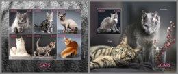 LIBERIA 2020 MNH Cats Katzen Chats M/S+S/S - IMPERFORATED - DH2012 - Hauskatzen