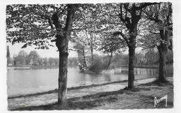 VIGNEUX EN 1961 - LE LAC - TIMBRE DECOLLE - FORMAT CPA VOYAGEE - Vigneux Sur Seine