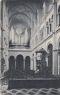 LEUVEN   / INTERIEUR JEZUITENKERK  1911 - Leuven