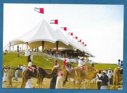 CAMEL RACING UNITED ARAB EMIRATES - Saudi Arabia