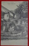 Postcard Of The   Agueda /   Trecho Do Jardim Conde Borralha ( Lote Nº 109 ) - Aveiro