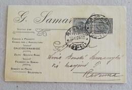 """Cartolina Postale Pubblicitaria """"G.Samarughi"""" Concimi E Prodotti Chimici Per L'Agricoltura Modena Per Ravenna - Marcofilía"""