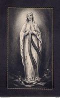 Image Pieuse Religieuse Holly Card Notre-Dame De Lourdes - Santini