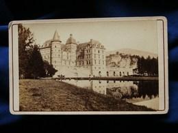 Photo CDV  Michaud à Grenoble  Chateau De Vizille - Animée : ânes - CA 1870-80 - L301 - Fotos
