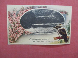 Australia Scene Border Type-------------- Pink Heath & Kookaburra  Ref 3952 - Australie