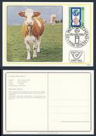 Austria Österreich 1982 Karte Card - Mi 1705 YT 1534 SG 1932 - 25. Weltmilchtag / World Dairying Day / Wereldmelkdag - Agriculture