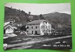 Cartolina - Miazzina - Alpe Di Pala - 1960 - Verbania