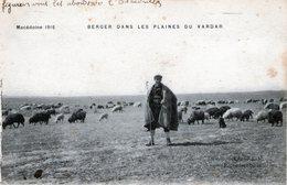 (142) CPA  Macedoine  1916  Berger Dans Les Plaines Du Vardar  (bon Etat) - Macédoine