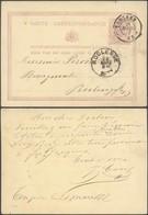 """EP Au Type 5ctm Mauve """"carte-correspondance"""" Obl Double Cercle """"Tongres"""" (1877) > Roclenge - Postcards [1871-09]"""