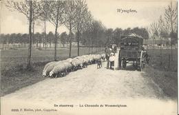 Wijneghem Wijnegem - De Steenweg - La Chaussée De Wommelghem (Uitg  Hoelen Nr 3033) - Wijnegem