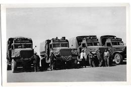 Ligne Du Hoggar - El Golea (42) - Il Faudrait 250 Chameaux Porteurs Pour Le Remplacer Collection Lusson Non Circulée - Camions & Poids Lourds