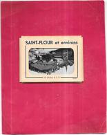 DEPT 15 - LOT De 10 Photos 6x9cm De SAINT FLOUR Et Environs  - - 5 - 99 Cartes