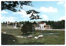 Piane Di Mocogno - Stazione Climatica - Other Cities
