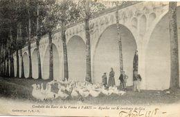 - GISY Les Nobles (89) -  Aqueduc Des Eaux De La Vanne à Paris  (animée, Oies)  -20969- - Otros Municipios