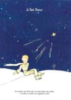 CPM Illustrée St Exupéry Le Petit Prince Si Tu Aimes Une Fleur Qui Se Trouve Sur Une étoile - Cuentos, Fabulas Y Leyendas