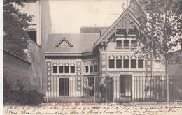 ANTWERPEN / ZOO  DIERENTUIN  / DROMEDARISSEN 1903 - Antwerpen