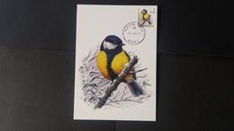 """BUZIN - Carte Oiseaux CM : Numéro 2966 """"Mésange Charbonnière"""" - Cartes-maximum (CM)"""