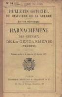 MANUEL BULLETIN OFFICIEL MINISTERE GUERRE 1907 HARNACHEMENT CHEVAUX GENDARMERIE TROUPE - Livres