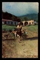 St Kitts – Local Transport - Saint-Christophe-et-Niévès