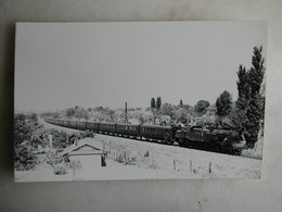 PHOTO Fenino - Train - Crosnes - 07/1949 - Trains