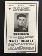 NEW - Ww2 - Carte Décès NIEDERFEULEN Luxemburg Luxembourg  Feulen Soldat 1940 1941 1942 1943 1944 1945 - Cartes Postales