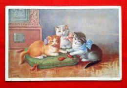 CPA Illustrateur C Öhler- Chats - Künstlerkarten